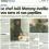 Joël Metony chef du restaurant «L'éveil des sens»